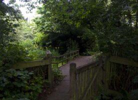 London's Pocket Parks: Harleyford Road Gardens