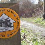 belmont-trail-7