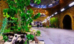 Pop-up garden appears in London Bridge station tunnels