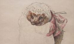 Exhibition – Beatrix Potter's Art: 'drawn with design'
