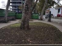 London's Pocket Parks, Rennie Garden, SE1