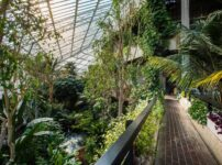 Tickets Alert: Visit London's largest free Conservatory