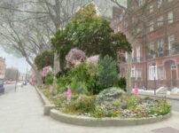London's Pocket Parks: Pont Street, SW1