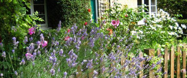 Visit a garden - Railway Cottages
