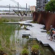 Engineering blue-green cities