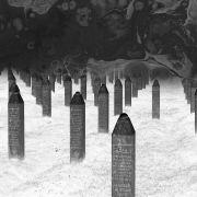 Srebrenica: the New Evidence