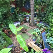 Visit a garden - 4 Becondale Road (Gipsy Hill)