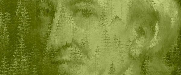 John Evelyn: Britain's First Environmentalist