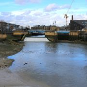 Roding Valley Watery Commons