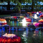 Diwali Lights up Canary Wharf