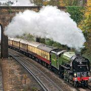 Steam train to loop around Sth London