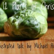 The 12 Plants of Christmas – Wreaths, Raisins and Roasties!