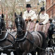 Horse and carriage rides around Chelsea
