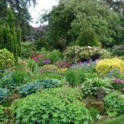 Visit a garden - Shieling (Kingswood)