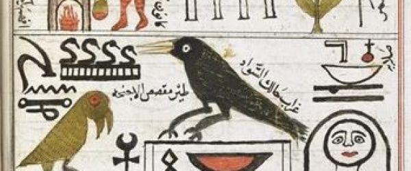 Egyptology: The missing millennium