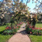 Visit a garden - Edwardes Square (Kensington)