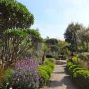 Visit a garden - 33 Wood Vale (Highgate)