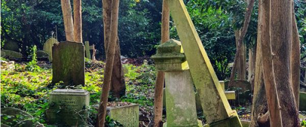 Highgate Cemetery: a historic cemetery for the 21st century