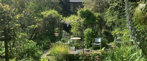 Visit a garden - South London Botanical Institute (Tulse Hill)