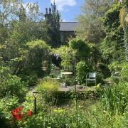 Visit a garden - South London Botanical Institute (Tulse Hill)