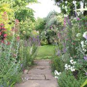Visit a garden - 36 Thornhill Square (Barnsbury)