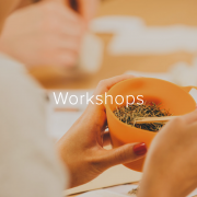 Workshop: Growing Your Own Herbs