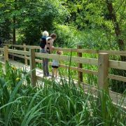 Monthly open day at Dacres Wood Nature Reserve