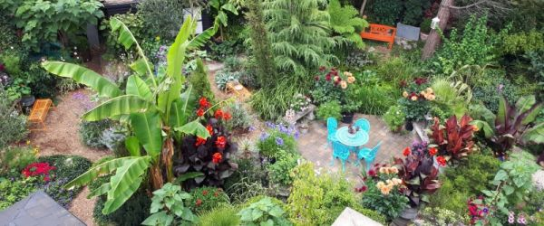 Visit a garden - 38 York Road (Ealing)