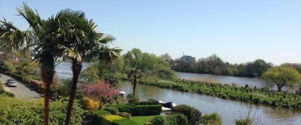 Visit a garden - Chiswick Mall Gardens