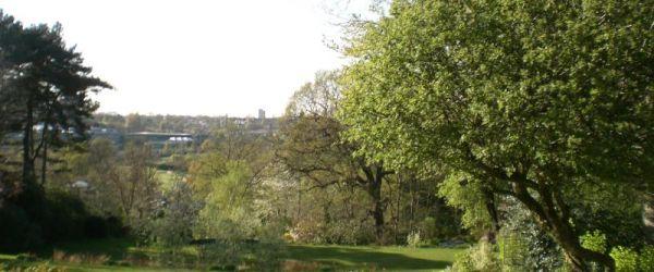 Visit a garden - 61 Arthur Road (Wimbledon)