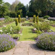Blooming Gardens at Eltham Palace