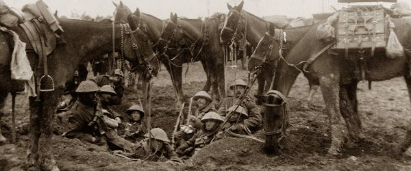 British Army Horse Power in the Great War