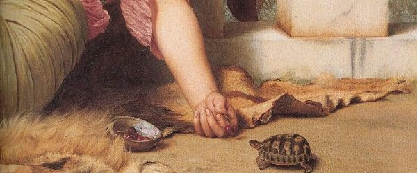 Tortoise Keeping in Europe - a Brief History