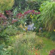 Visit a garden - Tanfield Avenue (Neasden)
