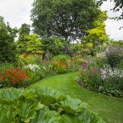 Visit a garden - Willifield Way (Golders Green)