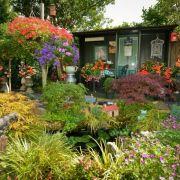 Visit a garden - Ashurst Drive (Barkingside)
