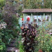 Visit a garden - Springfield Avenue (Muswell Hill)