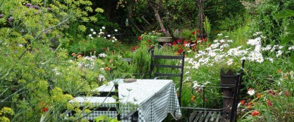 Visit a garden - Twyford Avenue (East Finchley)