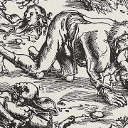 Animal Transformations: Selkies, Werewolves and Witch-Hares