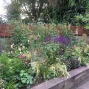 Visit a garden - Southgate Road (Dalston)