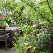 Visit a garden - Turret Grove (Clapham)