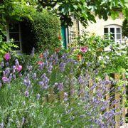 Visit a garden - Railway Cottages (Alexandra Palace