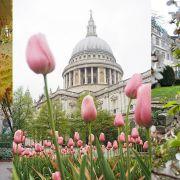 City Secret Gardens - Look Up London Walking Tour