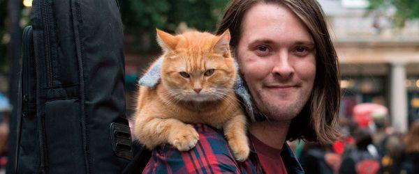 Street Cat Bob - statue unveiling