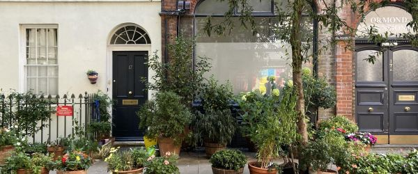 Quirky Bloomsbury - Look Up London Walking Tour