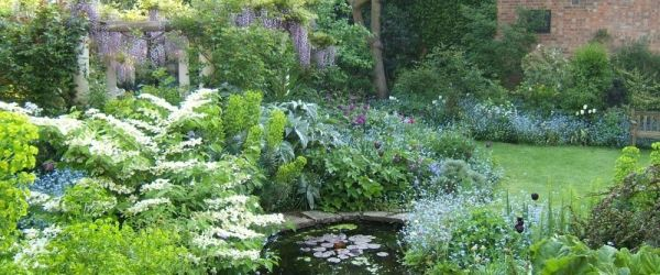 Visit a garden - The Orchard (Chiswick)