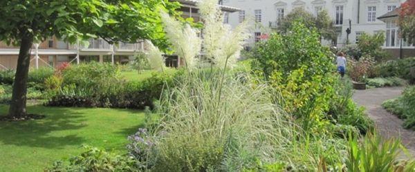 Visit a garden - Royal Trinity Hospice (Clapham Common)