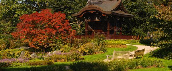 Japan at Kew Gardens