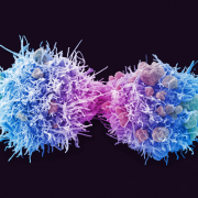 Outwitting Cancer - Making Sense of Nature's Enigma