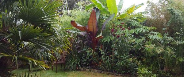 Visit a garden - Grove Park (Camberwell)
